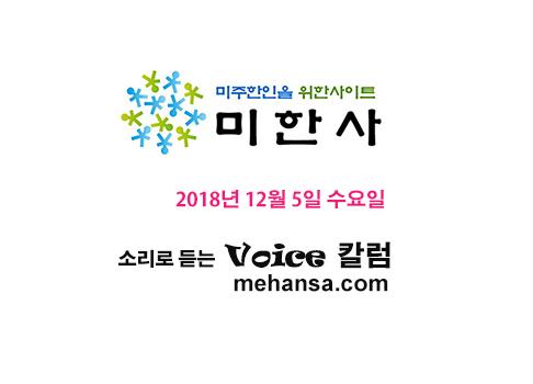 12- 05 -2018 Voice.jpg