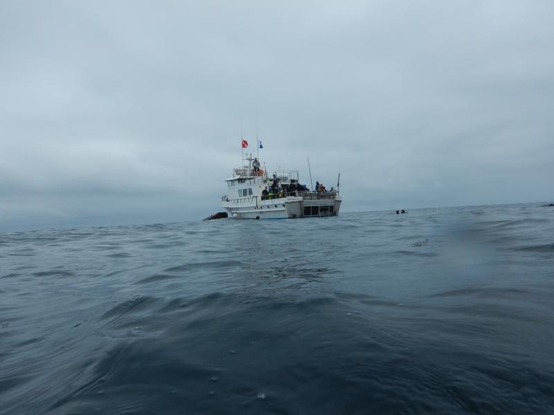 Catalina-6.15.19-001.jpg