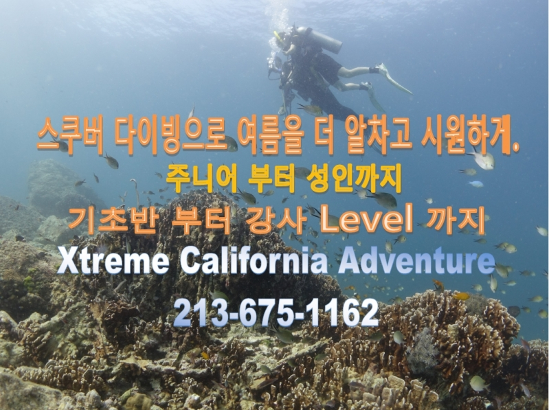 Education-XtremeCalAdventure.jpg