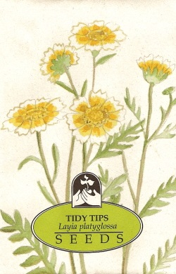 wildflower_Tidy_Tips_250.jpg